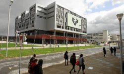 insercionlaboral-universidad-jovenes