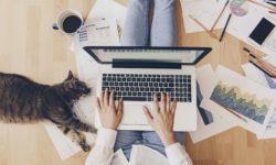 Trabajar - Primer empleo - Becas - Prácticas Profesionales con Fundación Novia Salcedo