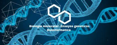 Práctica profesional en técnicas de análisis genéticos en laboratorio- Derio – Ref.05033