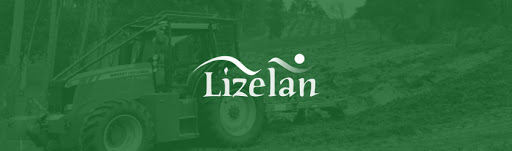 Becas Prácticas profesionales remuneradas en Lizelan con Fundación Novia Salcedo