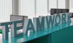 Becas Prácticas profesionales remuneradas en Teamwork Editorial con Fundación Novia Salcedo.